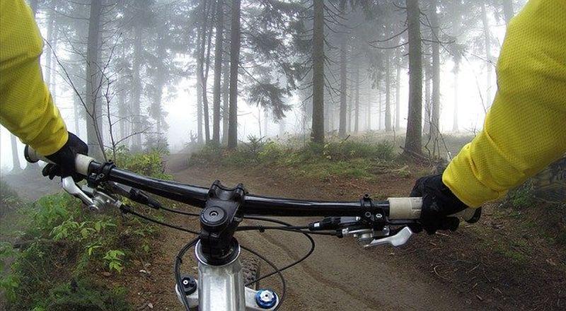 gorsko električno kolo