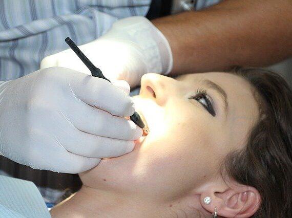 zobni vsadki cena